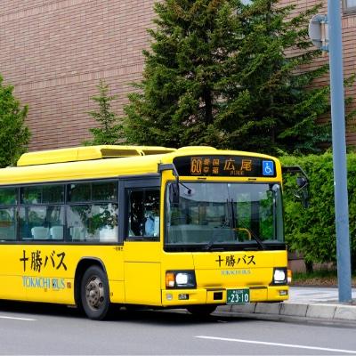 バス/タクシー