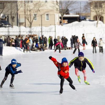 スキー/スケート